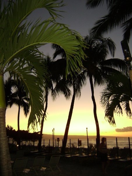 Maui trip last year