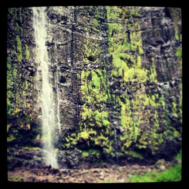 Waimoku Falls.